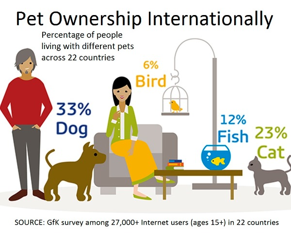 Percentage Of People Who Own A Pet Dog